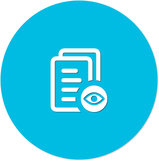 Icon (blue flat) - Audit.png