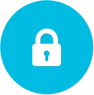 Icon (blue flat) - Secure.png