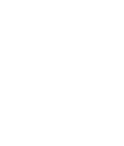 Icon - Badge