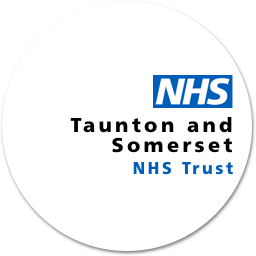 Logo Icon - Taunton and Somerset